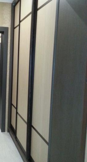 -Шкаф-купе с зеркалом «Модель 56»-фото1